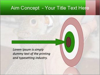 Squirrel PowerPoint Templates - Slide 83