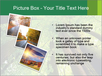 0000091857 PowerPoint Template - Slide 17