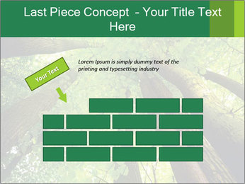 0000091857 PowerPoint Template - Slide 46