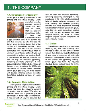 0000091857 Word Template - Page 3