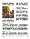 0000091857 Word Templates - Page 4