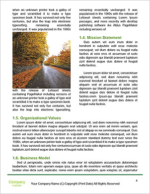 0000091857 Word Template - Page 4