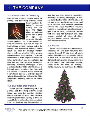 0000091860 Word Template - Page 3