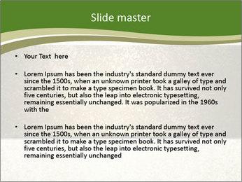 Elegant textured gold ribbon stripe PowerPoint Template - Slide 2