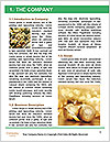 0000091863 Word Template - Page 3