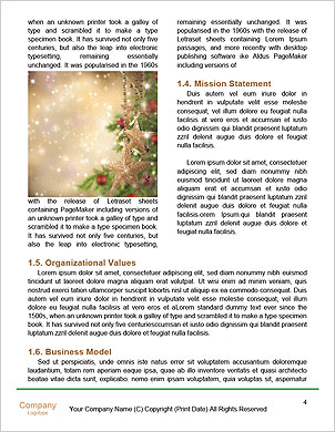 0000091863 Word Template - Page 4