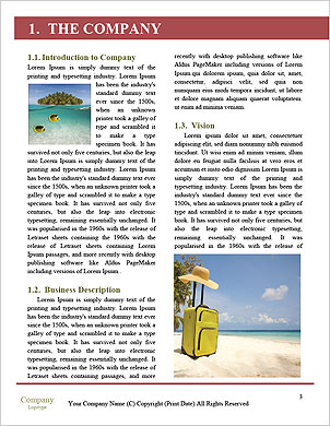 0000091870 Word Template - Page 3