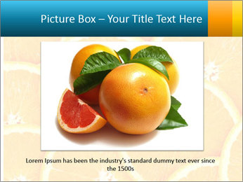 Citrus-fruit PowerPoint Template - Slide 16