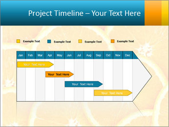 Citrus-fruit PowerPoint Template - Slide 25