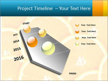 Citrus-fruit PowerPoint Template - Slide 26