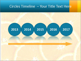 Citrus-fruit PowerPoint Template - Slide 29