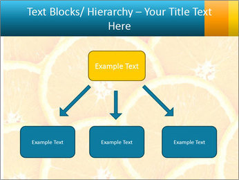 Citrus-fruit PowerPoint Template - Slide 69
