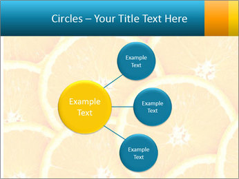 Citrus-fruit PowerPoint Template - Slide 79