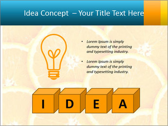 Citrus-fruit PowerPoint Template - Slide 80