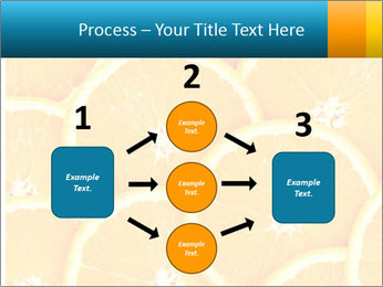 Citrus-fruit PowerPoint Template - Slide 92