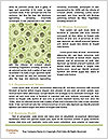 0000091893 Word Templates - Page 4