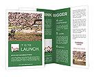 0000091895 Brochure Template