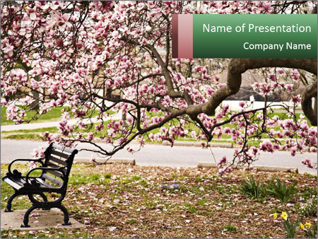 Park bench PowerPoint Templates