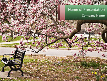 Park bench PowerPoint Templates - Slide 1