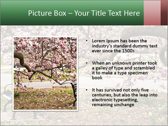 Park bench PowerPoint Templates - Slide 13
