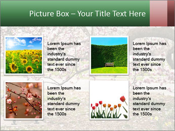 Park bench PowerPoint Templates - Slide 14