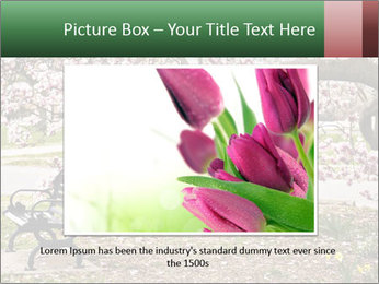 Park bench PowerPoint Templates - Slide 15