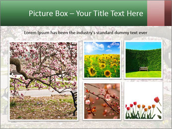 Park bench PowerPoint Templates - Slide 19