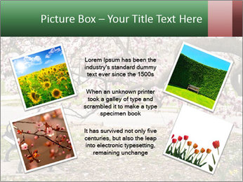 Park bench PowerPoint Templates - Slide 24