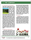 0000091895 Word Templates - Page 3