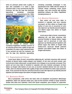 0000091895 Word Template - Page 4