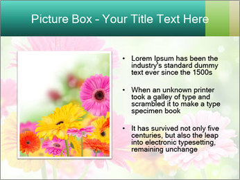 Colored flowers PowerPoint Template - Slide 13