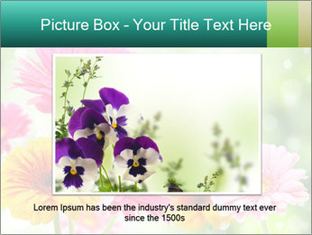 Colored flowers PowerPoint Template - Slide 15