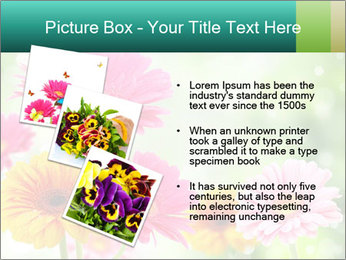 Colored flowers PowerPoint Template - Slide 17