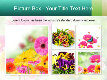 Colored flowers PowerPoint Template - Slide 19