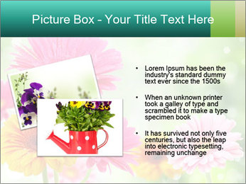 Colored flowers PowerPoint Template - Slide 20