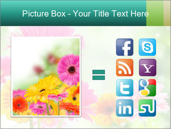 Colored flowers PowerPoint Template - Slide 21