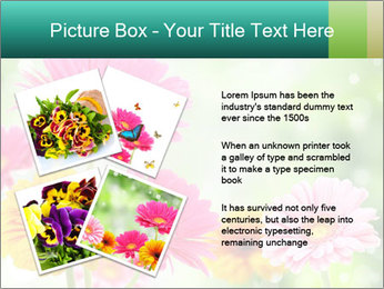 Colored flowers PowerPoint Template - Slide 23