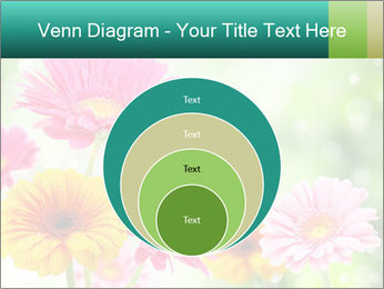 Colored flowers PowerPoint Template - Slide 34