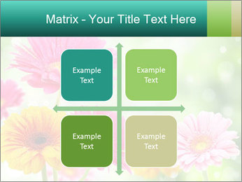 Colored flowers PowerPoint Template - Slide 37