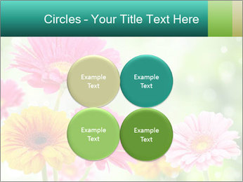 Colored flowers PowerPoint Template - Slide 38