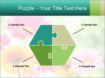Colored flowers PowerPoint Template - Slide 40