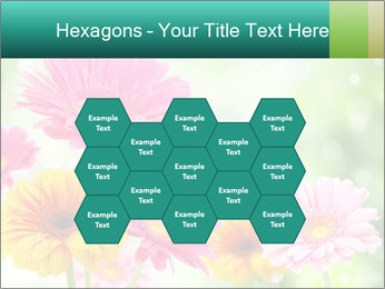 Colored flowers PowerPoint Template - Slide 44