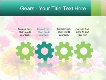 Colored flowers PowerPoint Template - Slide 48