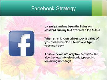 Colored flowers PowerPoint Template - Slide 6