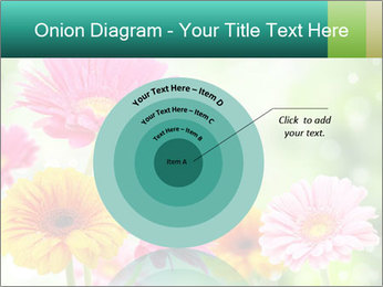 Colored flowers PowerPoint Template - Slide 61