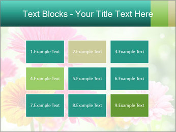 Colored flowers PowerPoint Template - Slide 68