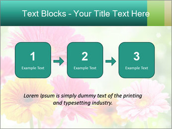 Colored flowers PowerPoint Template - Slide 71
