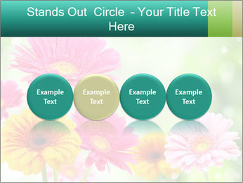 Colored flowers PowerPoint Template - Slide 76