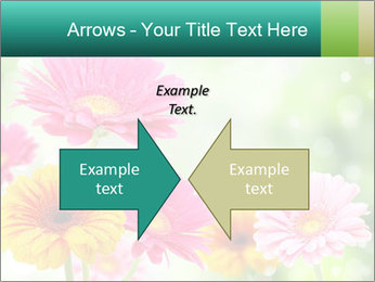 Colored flowers PowerPoint Template - Slide 90