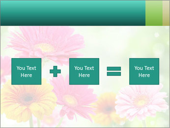Colored flowers PowerPoint Template - Slide 95
